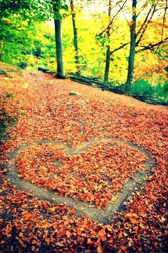 Ven a Benasque en otoño